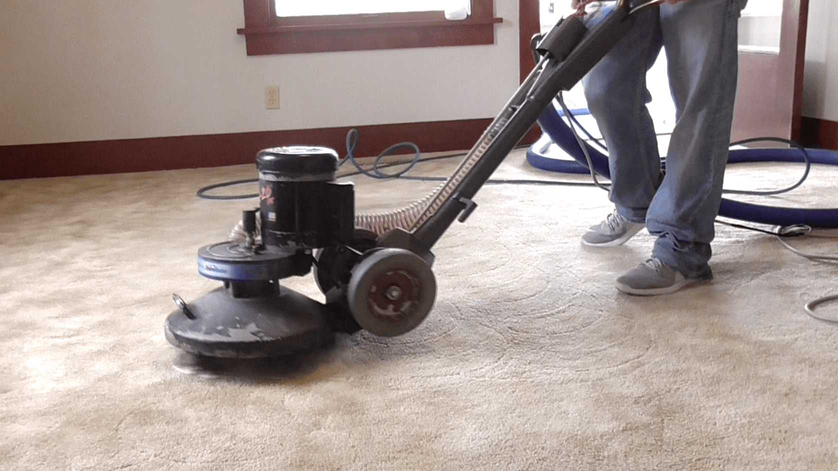 The Carpet Cleaner Pella